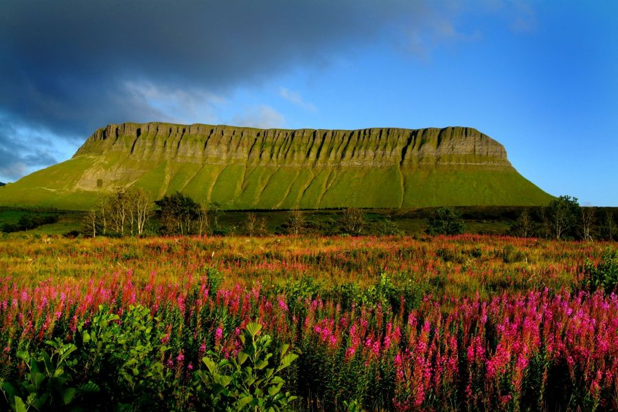 13 Daagse autorondreis Ontdek Ierland Hotels
