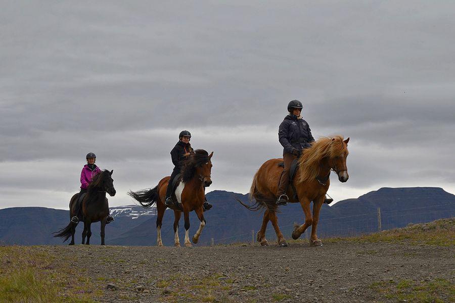 Paardrijden vanuit Varmahlid