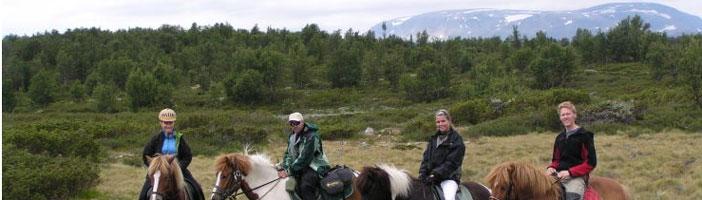 Paardrijtochten, Geilo