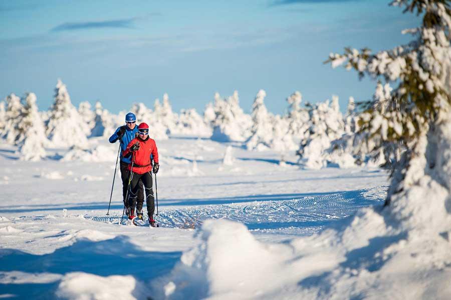 Langlaufen in het hart van Scandinavië, Trysil 2021 2022