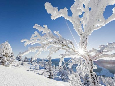 Wintersport Zweeds Lapland - met BBI Travel